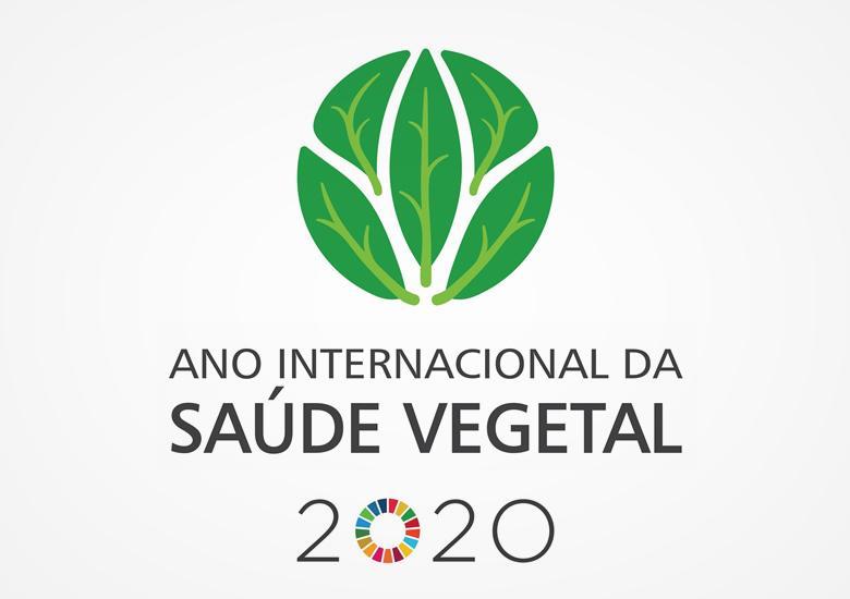 Colégio Laly Educação infantil e Ensino Fundamental - Saúde Vegetal 2020